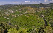 Site Natura 2000 « Haut Val d'Allier »